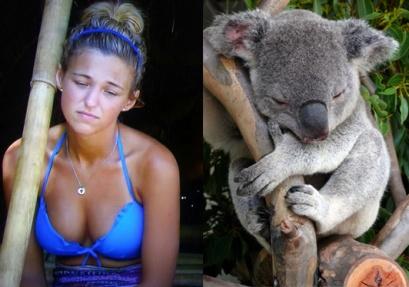Jefra-Koala